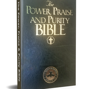 Praise and Purity Bible
